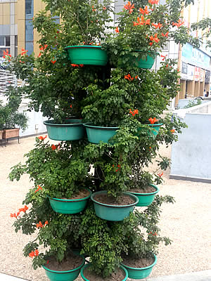 pots-planters-axis-mini